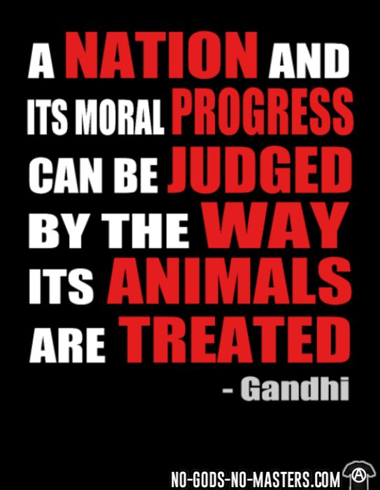 A nation and its moral progress can be judged by the way its animals are treated (Gandhi ) - T-shirt véganes et libération animale