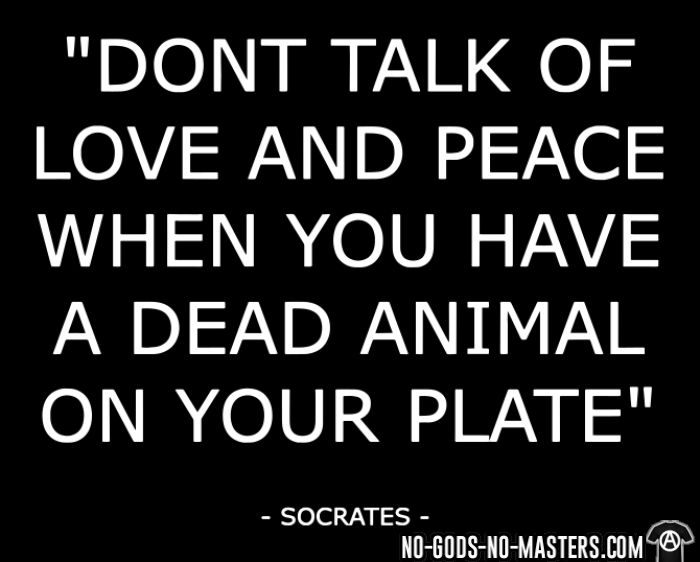 """Don't talk of love and peace when you have a dead animal on your plate"" (Socrates) - T-shirt véganes et libération animale"