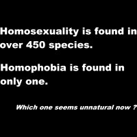 Homosexuality is found in over 450 species. Homophobia is found in only one. Which one seems unnatural now? - Débardeur pour femme Féministe