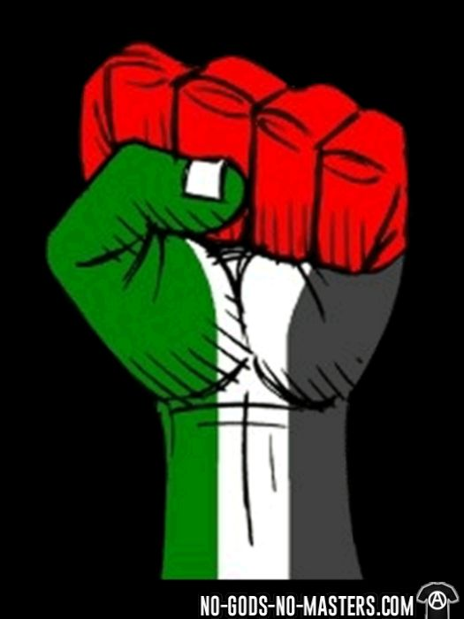 Palestine Raised Fist - T-shirt anti-guerre